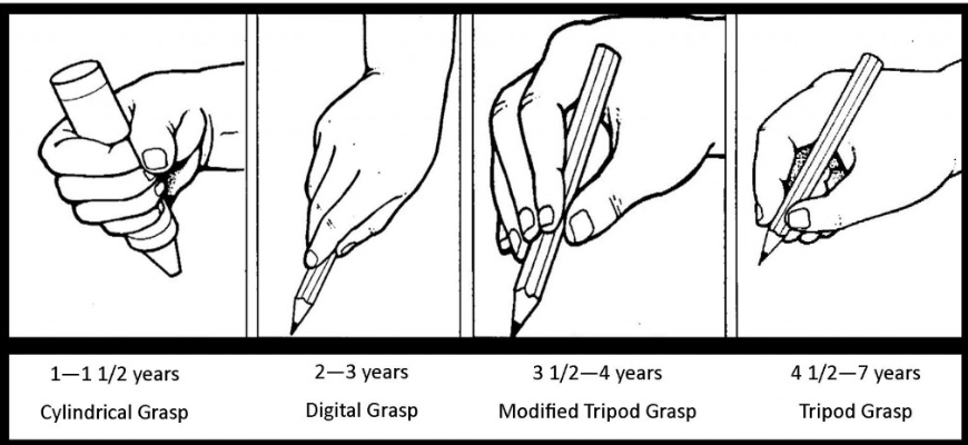 Image result for tripod grasp